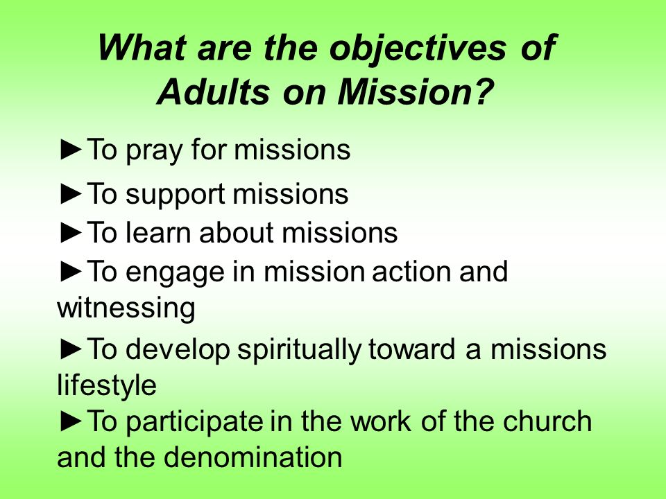 What are the objectives of Adults on Mission.