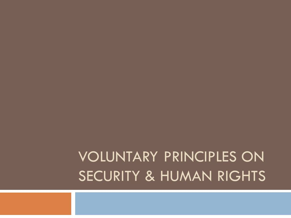 VOLUNTARY PRINCIPLES ON SECURITY & HUMAN RIGHTS
