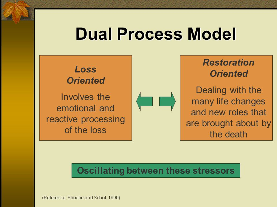 Dual Process Model Loss Oriented Involves the emotional and reactive processing of the loss Restoration Oriented Dealing with the many life changes an