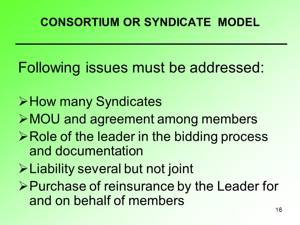 16 CONSORTIUM OR SYNDICATE MODEL Following issues must be addressed: How many Syndicates MOU and agreement among members Role of the leader in the bidding process and documentation Liability several but not joint Purchase of reinsurance by the Leader for and on behalf of members