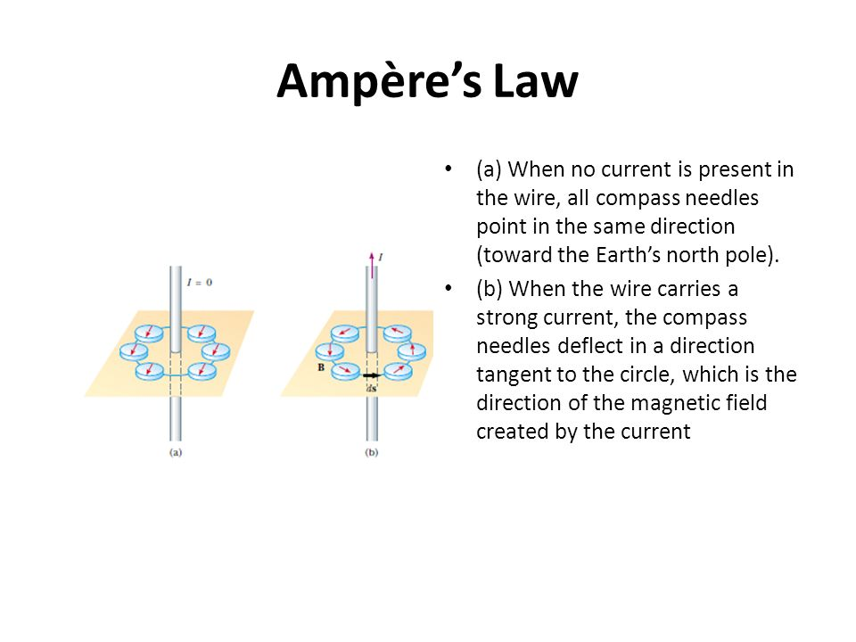 Ampères Law (a) When no current is present in the wire, all compass needles point in the same direction (toward the Earths north pole). (b) When the w