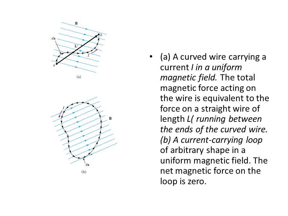 (a) A curved wire carrying a current I in a uniform magnetic field. The total magnetic force acting on the wire is equivalent to the force on a straig
