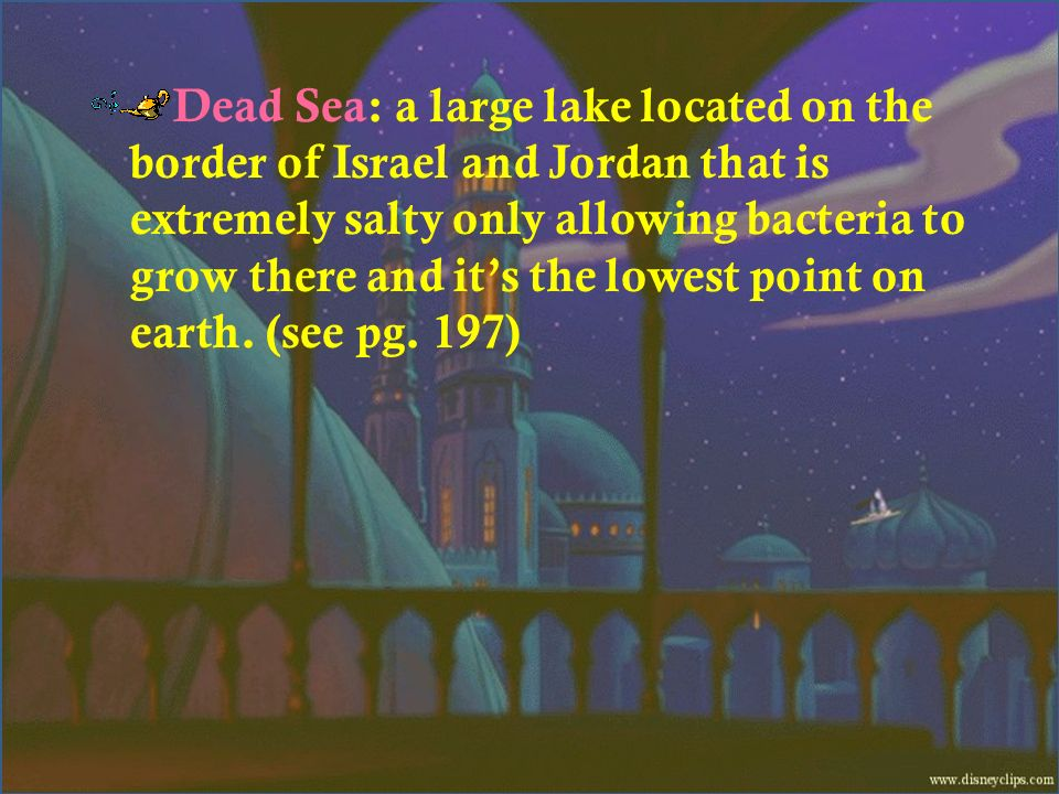Dead Sea: a large lake located on the border of Israel and Jordan that is extremely salty only allowing bacteria to grow there and its the lowest poin