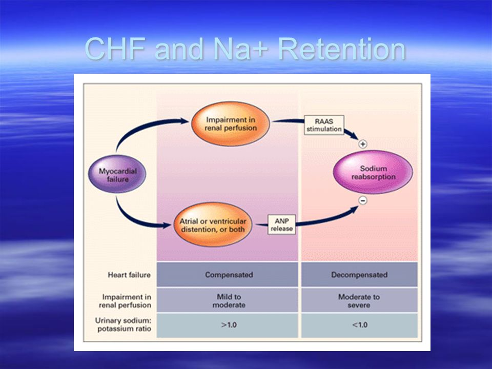 CHF and Na+ Retention