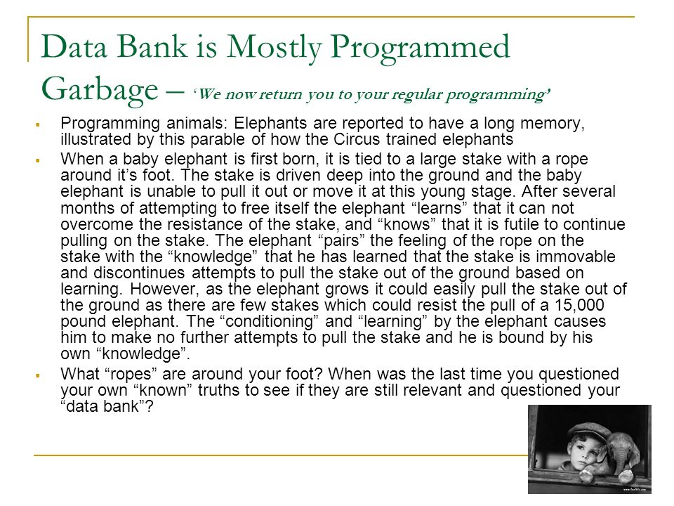 Data Bank is Mostly Programmed Garbage –We now return you to your regular programming Programming animals: Elephants are reported to have a long memor
