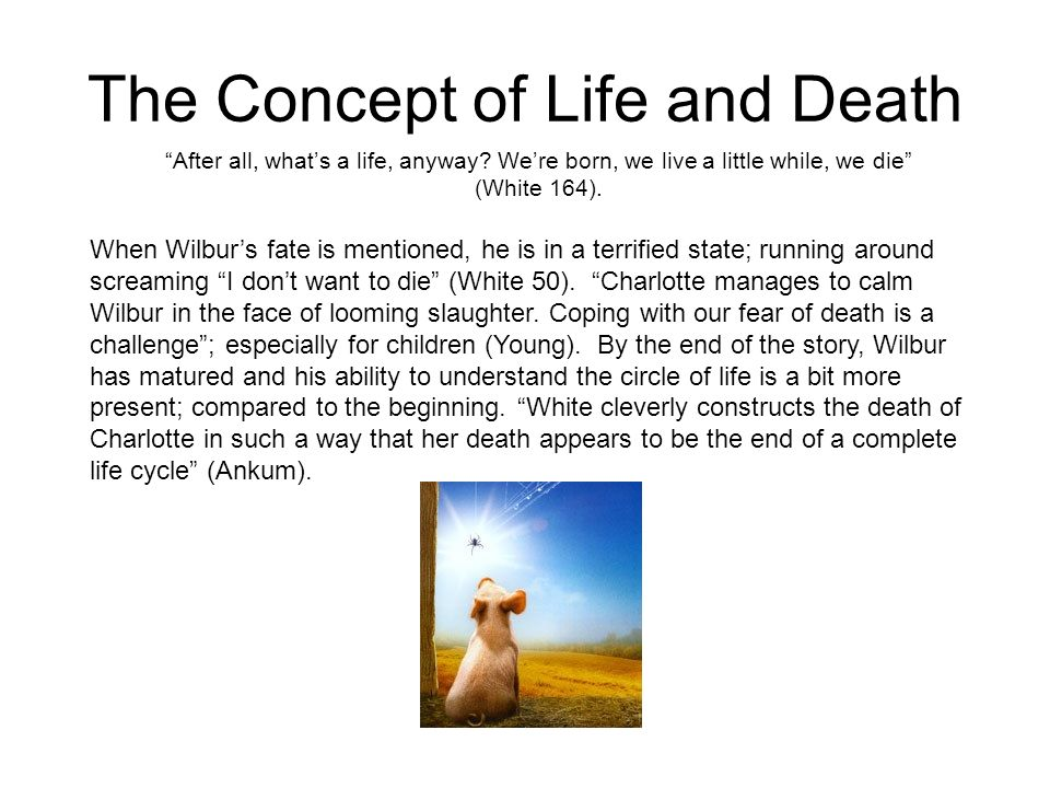 The Concept of Life and Death After all, whats a life, anyway? Were born, we live a little while, we die (White 164). When Wilburs fate is mentioned,