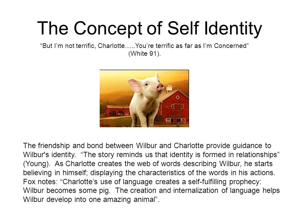 The Concept of Self Identity But Im not terrific, Charlotte…..Youre terrific as far as Im Concerned (White 91). The friendship and bond between Wilbur