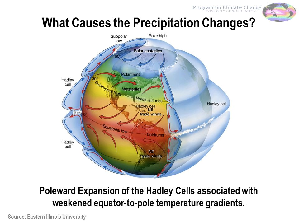 What Causes the Precipitation Changes.