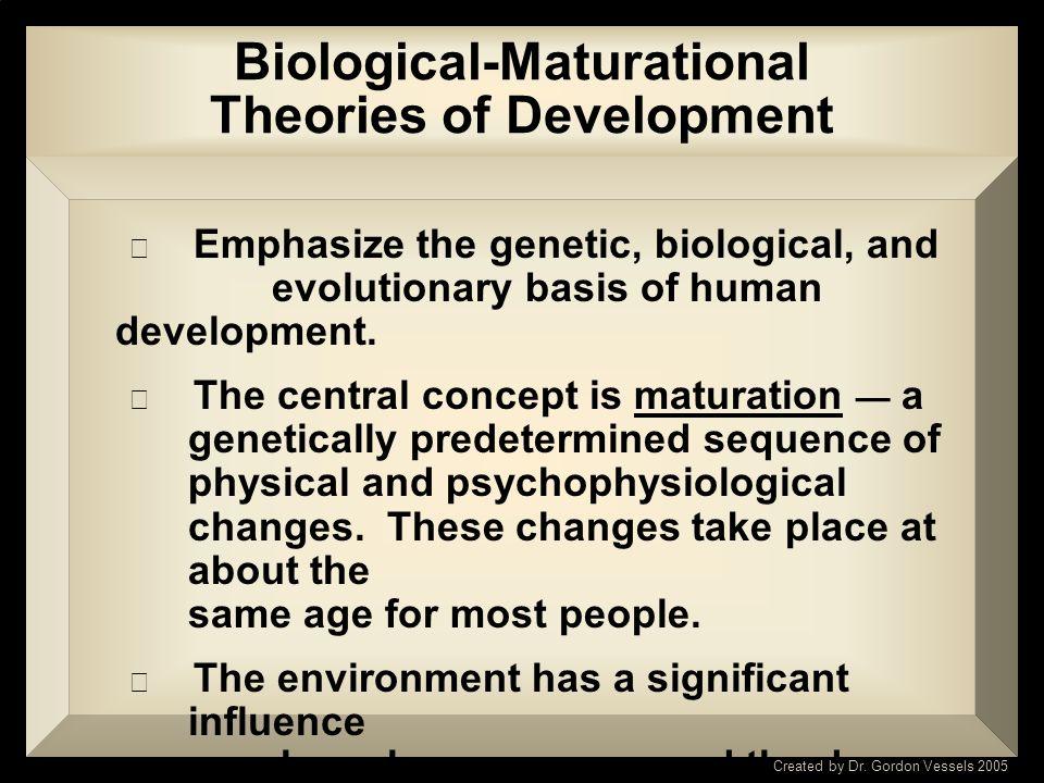 Prenatal Development BIOLOGICAL- MATURATIONAL THEORIES Placenta Umbilical Cord Amniotic Sac Sperm Cells Egg Created by Dr. Gordon Vessels 2005 Liver E