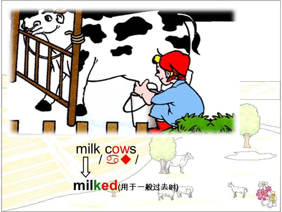 milk cows milked ( ) / au /