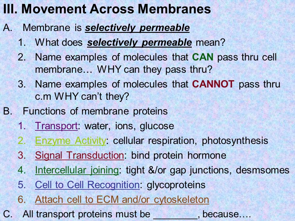 III. Movement Across Membranes A.Membrane is selectively permeable 1.What does selectively permeable mean? 2.Name examples of molecules that CAN pass