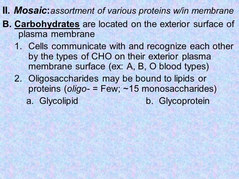 II. Mosaic: assortment of various proteins w/in membrane B. Carbohydrates are located on the exterior surface of plasma membrane 1.Cells communicate w