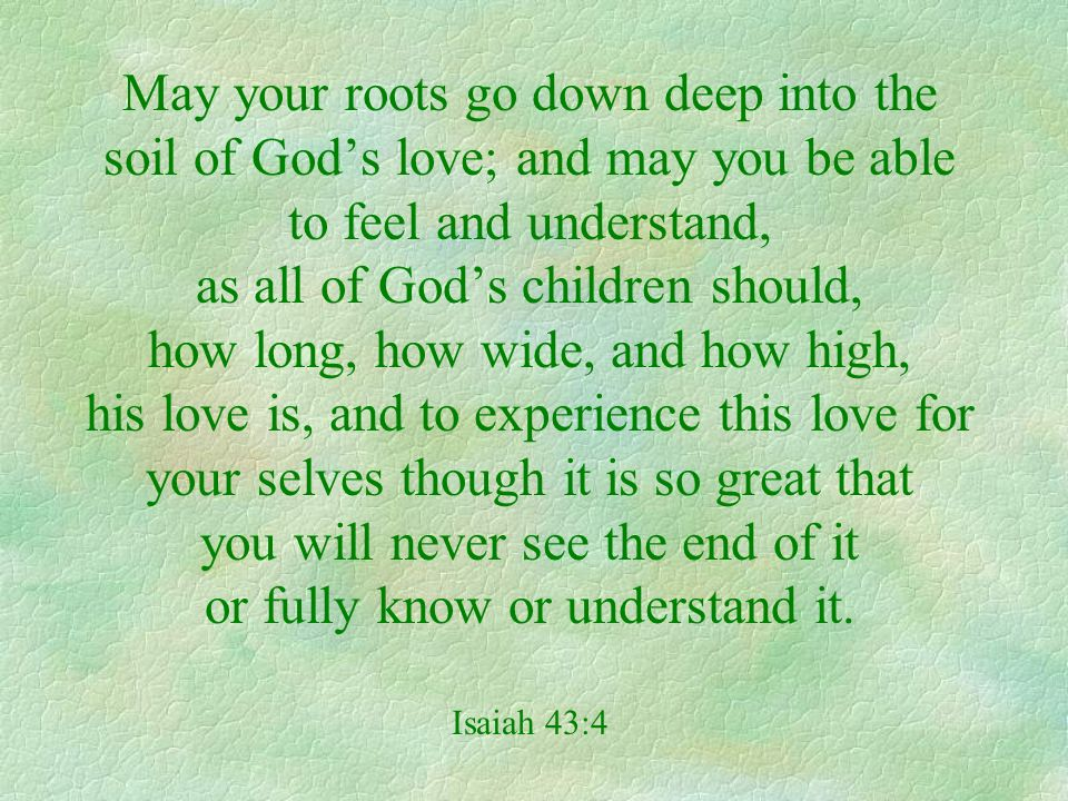 May your roots go down deep into the soil of Gods love; and may you be able to feel and understand, as all of Gods children should, how long, how wide