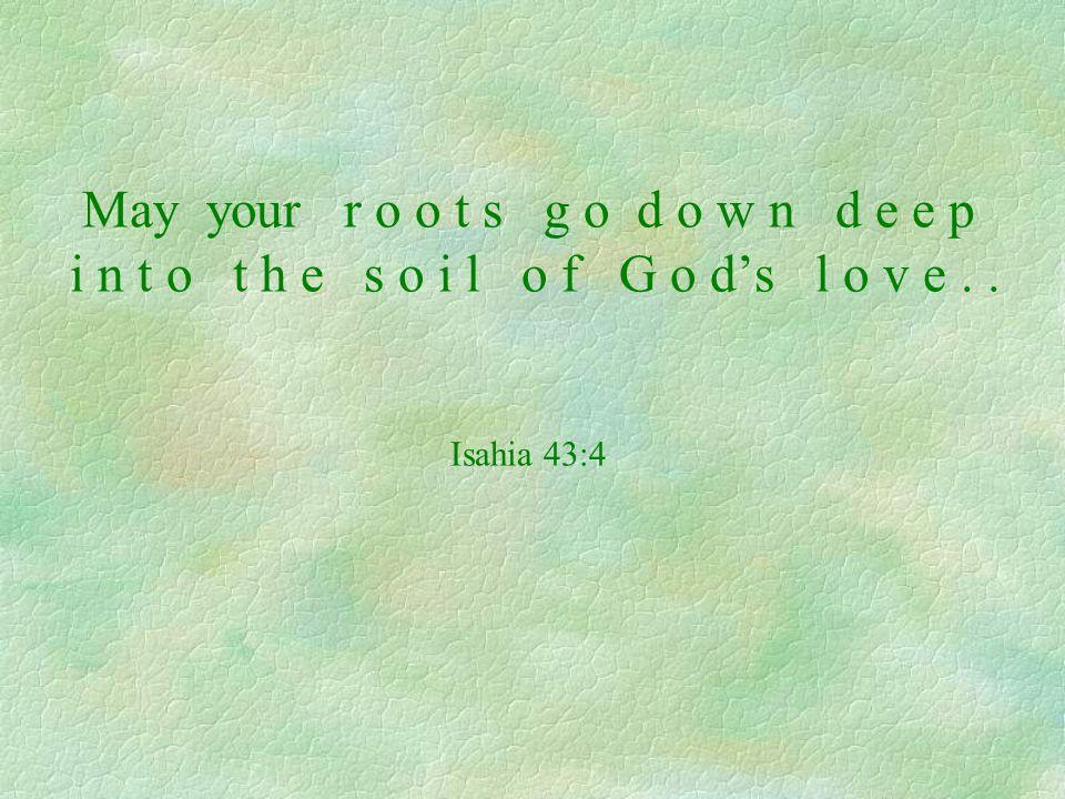May your r o o t s g o d o w n d e e p i n t o t h e s o i l o f G o ds l o v e.. Isahia 43:4