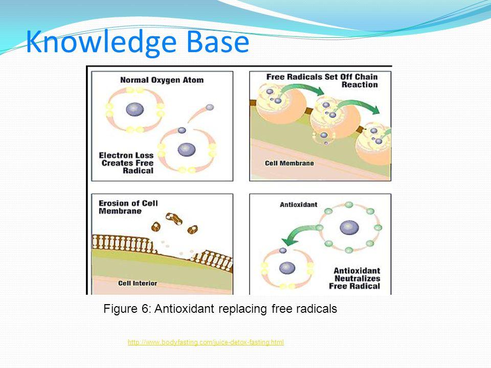 Knowledge Base http://www.bodyfasting.com/juice-detox-fasting.html Figure 6: Antioxidant replacing free radicals