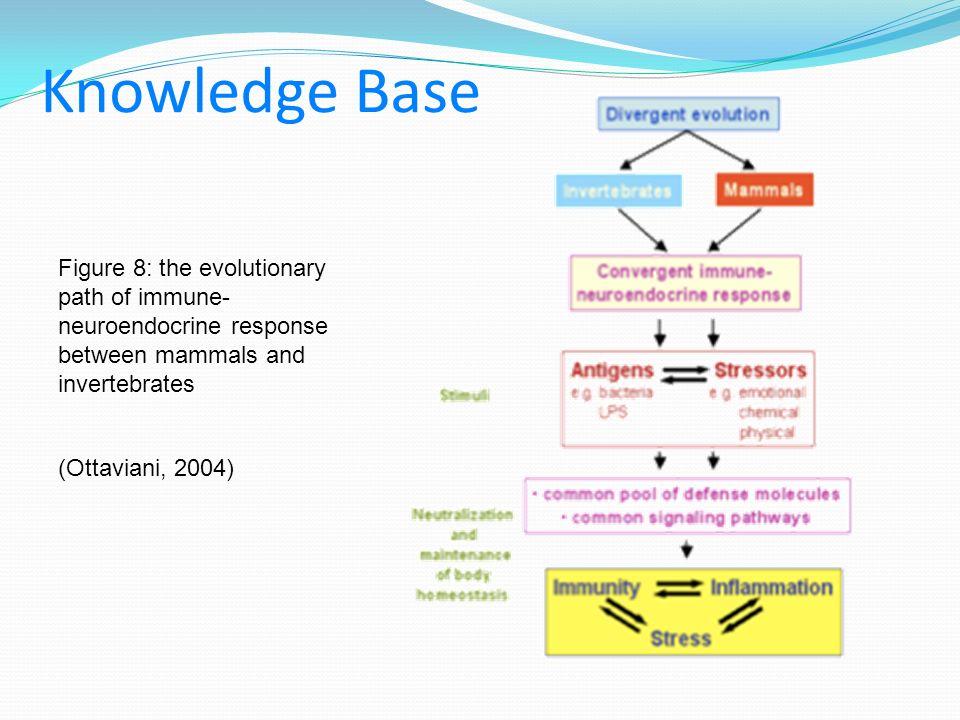 Knowledge Base (Ottaviani, 2004) Figure 8: the evolutionary path of immune- neuroendocrine response between mammals and invertebrates