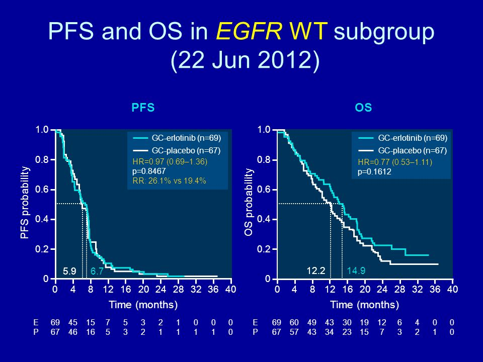 PFS and OS in EGFR WT subgroup (22 Jun 2012) 1.0 0.8 0.6 0.4 0.2 0 Time (months) PFS probability 1.0 0.8 0.6 0.4 0.2 0 Time (months) 08121620242840 OS