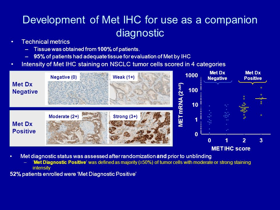 Met Dx Negative Development of Met IHC for use as a companion diagnostic Technical metrics –Tissue was obtained from 100% of patients. –95% of patient
