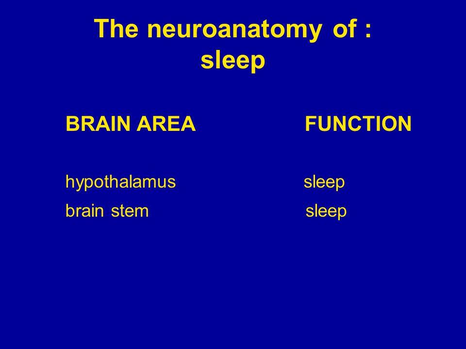 The neuroanatomy of : sleep BRAIN AREA FUNCTION hypothalamus sleep brain stem sleep