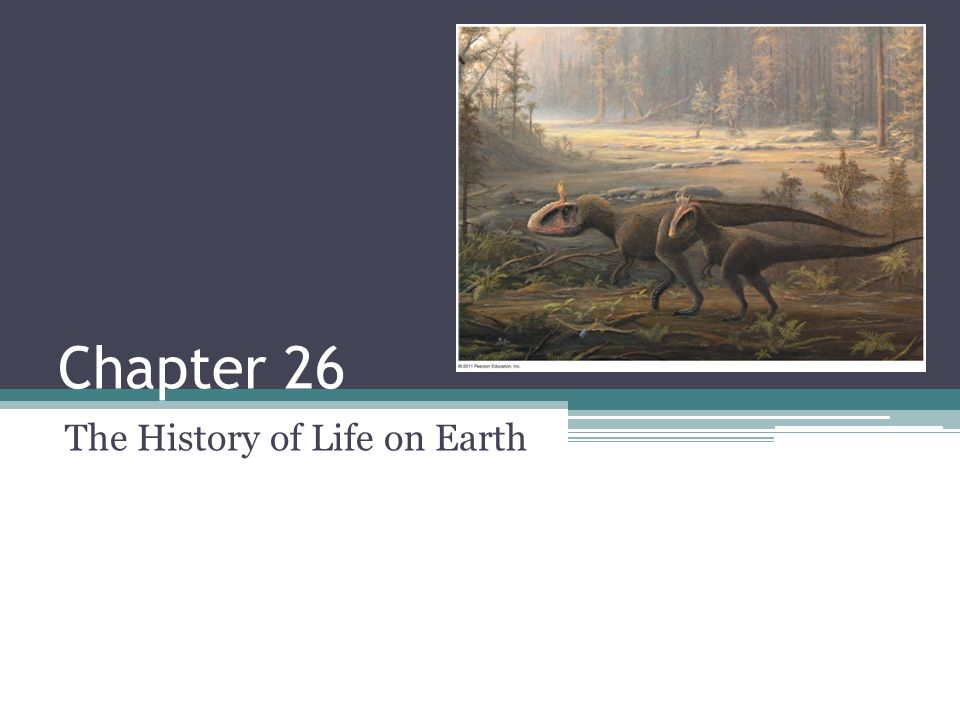 Chapter 26 The History of Life on Earth