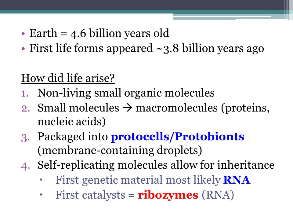Earth = 4.6 billion years old First life forms appeared ~3.8 billion years ago How did life arise? 1.Non-living small organic molecules 2.Small molecu