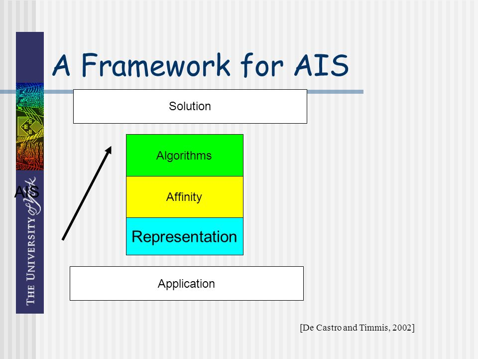 A Framework for AIS Algorithms Affinity Representation Application Solution AIS [De Castro and Timmis, 2002]