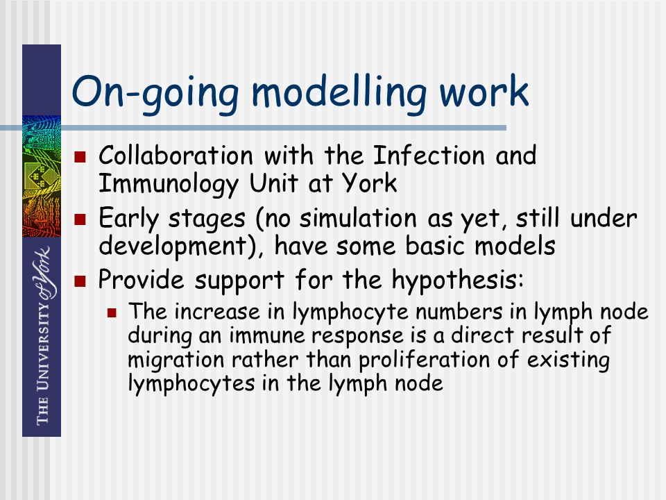 On-going modelling work Collaboration with the Infection and Immunology Unit at York Early stages (no simulation as yet, still under development), have some basic models Provide support for the hypothesis: The increase in lymphocyte numbers in lymph node during an immune response is a direct result of migration rather than proliferation of existing lymphocytes in the lymph node