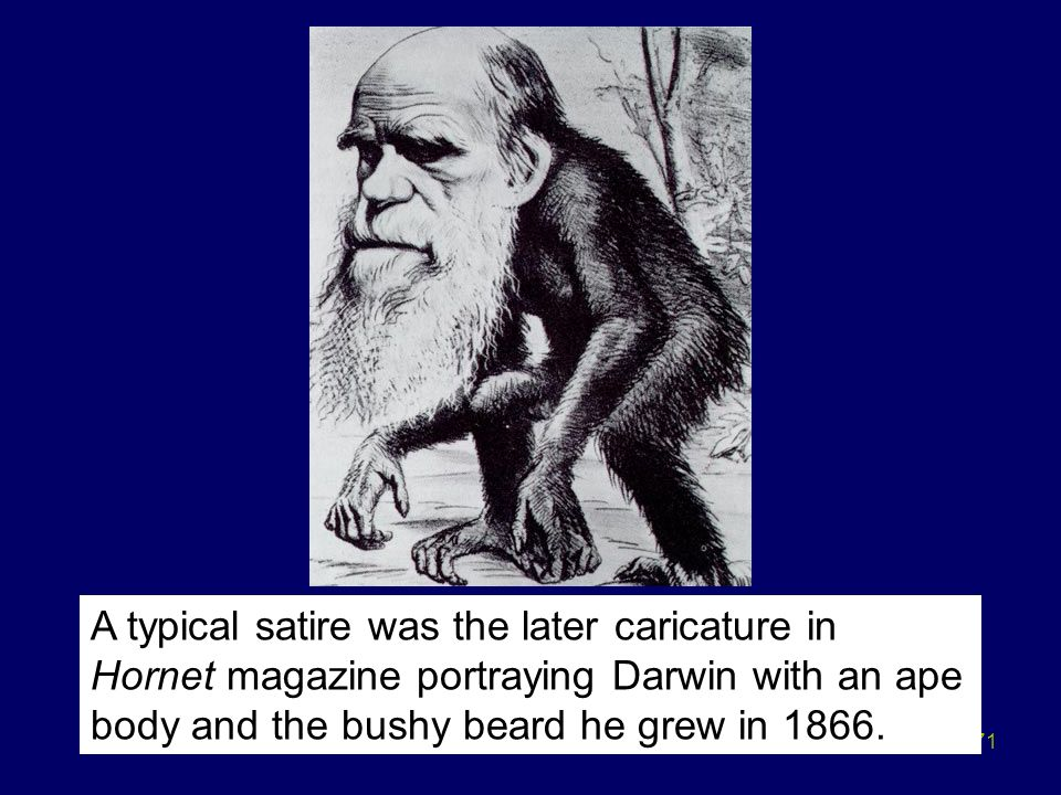 71 A typical satire was the later caricature in Hornet magazine portraying Darwin with an ape body and the bushy beard he grew in 1866.