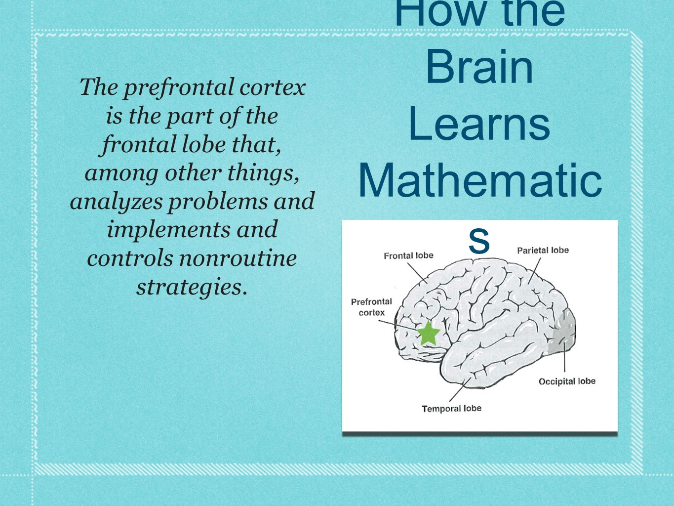 The prefrontal cortex is the part of the frontal lobe that, among other things, analyzes problems and implements and controls nonroutine strategies. H