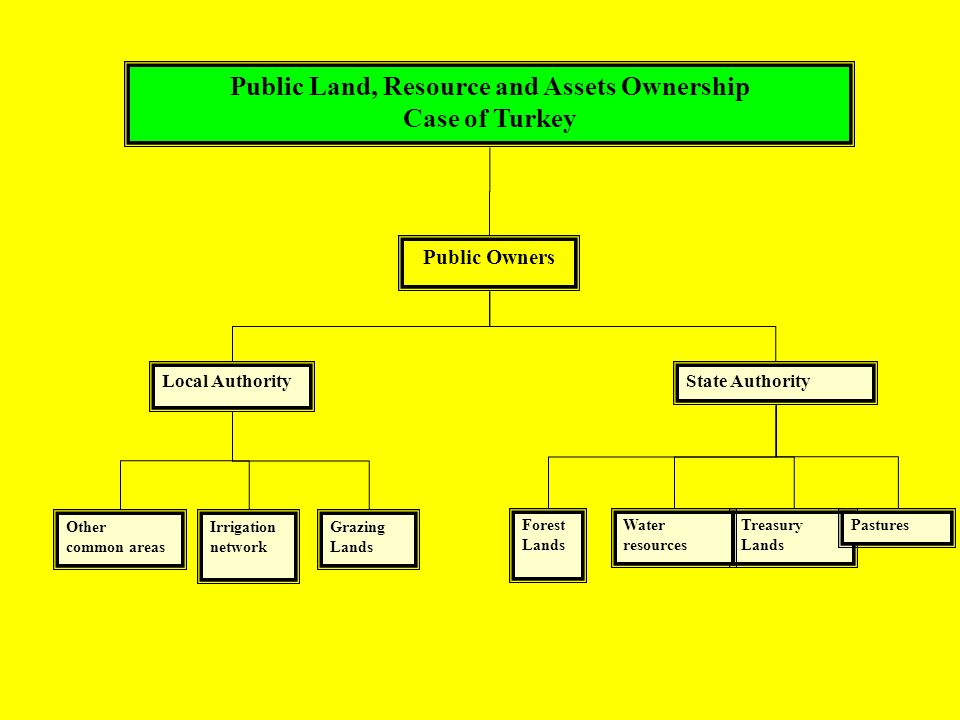 Public Land, Resource and Assets Ownership Case of Turkey Grazing Lands Other common areas Treasury Lands Forest Lands Pastures Public Owners Local AuthorityState Authority Water resources Irrigation network
