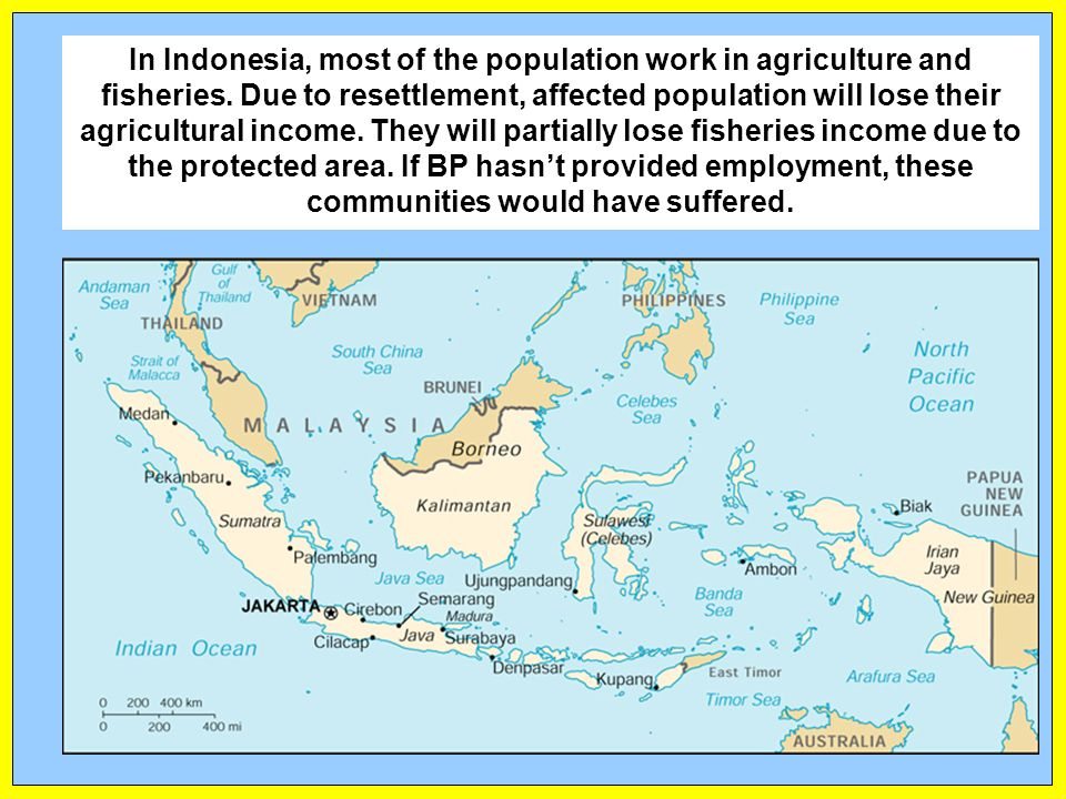 In Indonesia, most of the population work in agriculture and fisheries.