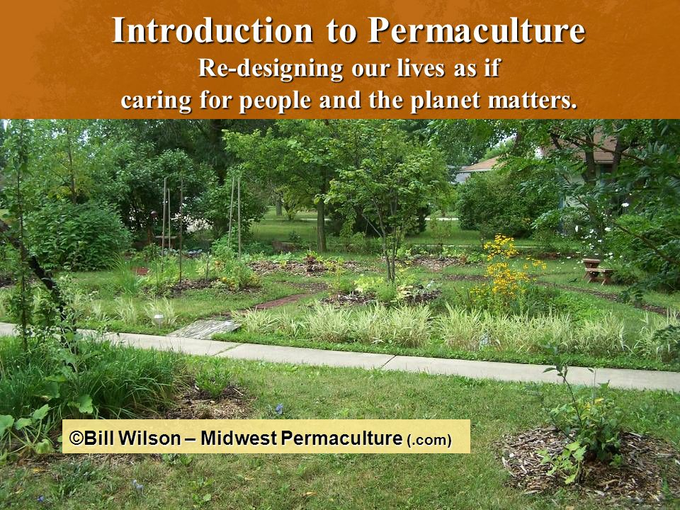 2 What it is? Why might we need it? What does it looks like? Permaculture