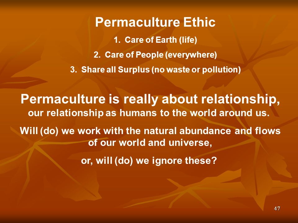 47 Permaculture is really about relationship, our relationship as humans to the world around us.