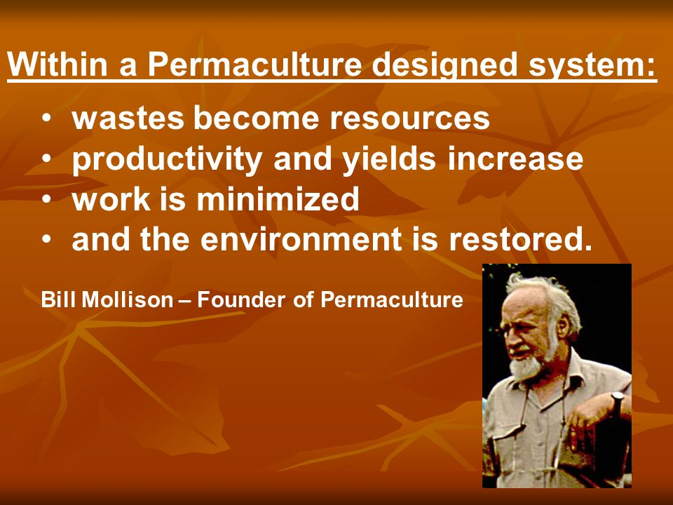46 The systems by which we live today are simply, non-sustainable.