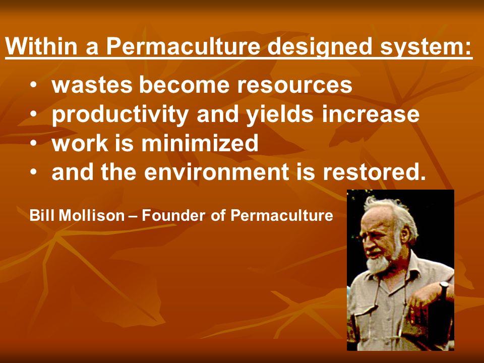 6 Fundamental Permaculture Design Principles Observe & connect.