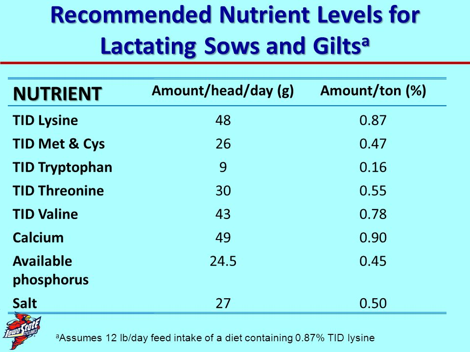Dietary TID Lysine Level Based Upon Litter Weaning Weight and Sow Feed Intake Adj.