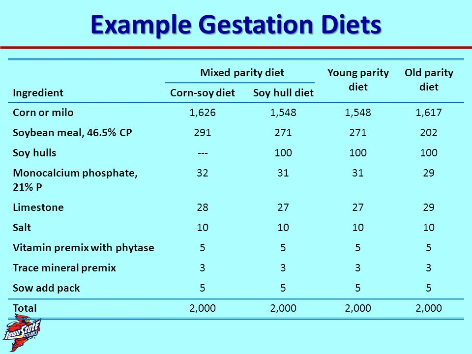 Example Gestation Diets Mixed parity dietYoung parity diet Old parity diet IngredientCorn-soy dietSoy hull diet Corn or milo1,6261,548 1,617 Soybean m