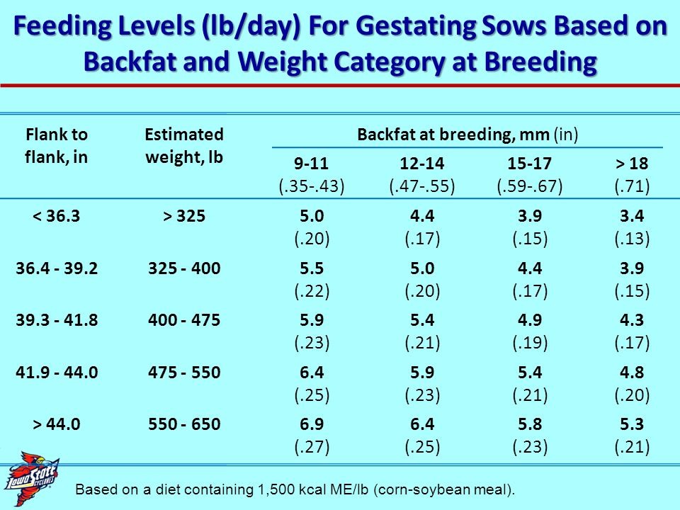 Case study You are managing a large sow herd, and your records indicate that sow productivity is a modest 23 pigs per sow per year (p/s/y).