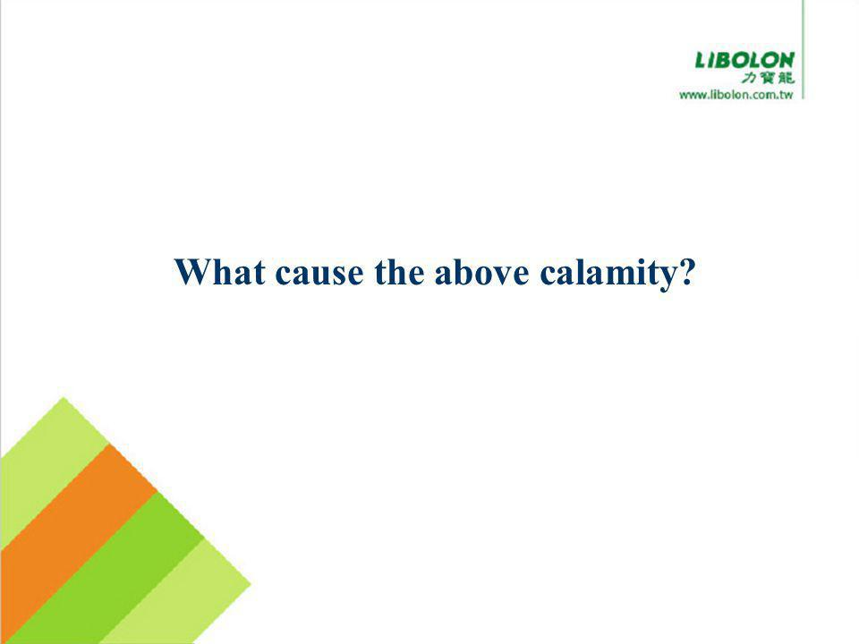 What cause the above calamity?