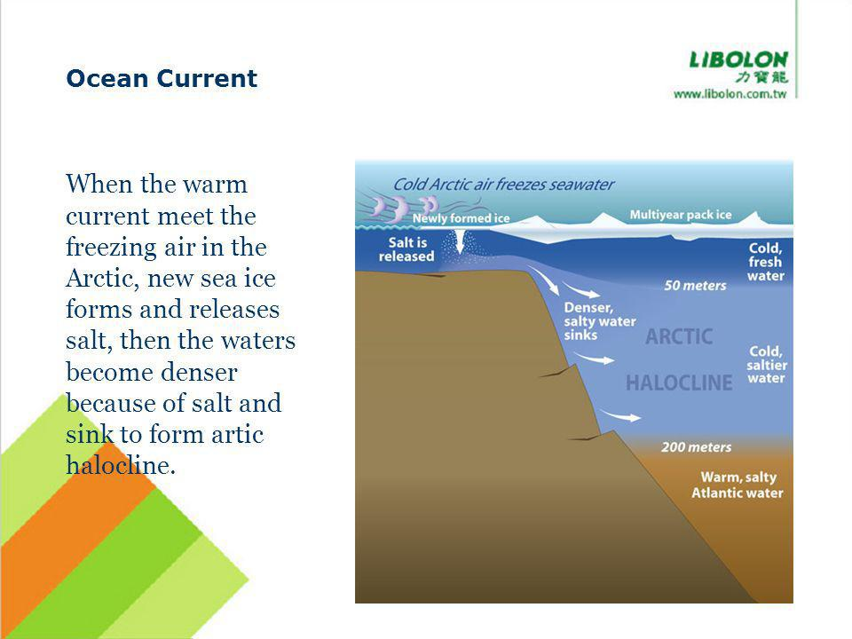 Ocean Current When the warm current meet the freezing air in the Arctic, new sea ice forms and releases salt, then the waters become denser because of salt and sink to form artic halocline.