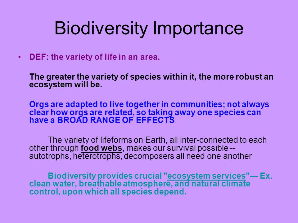 Biodiversity Importance DEF: the variety of life in an area. The greater the variety of species within it, the more robust an ecosystem will be. Orgs