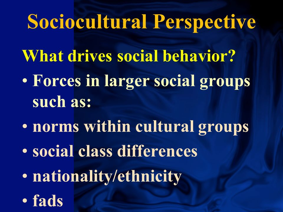 Sociocultural Evolutionary Social Learning Social Learning Social Learning Social Learning Social Cognitive Social Cognitive Social Cognitive Social Cognitive Major Theoretical Perspectives