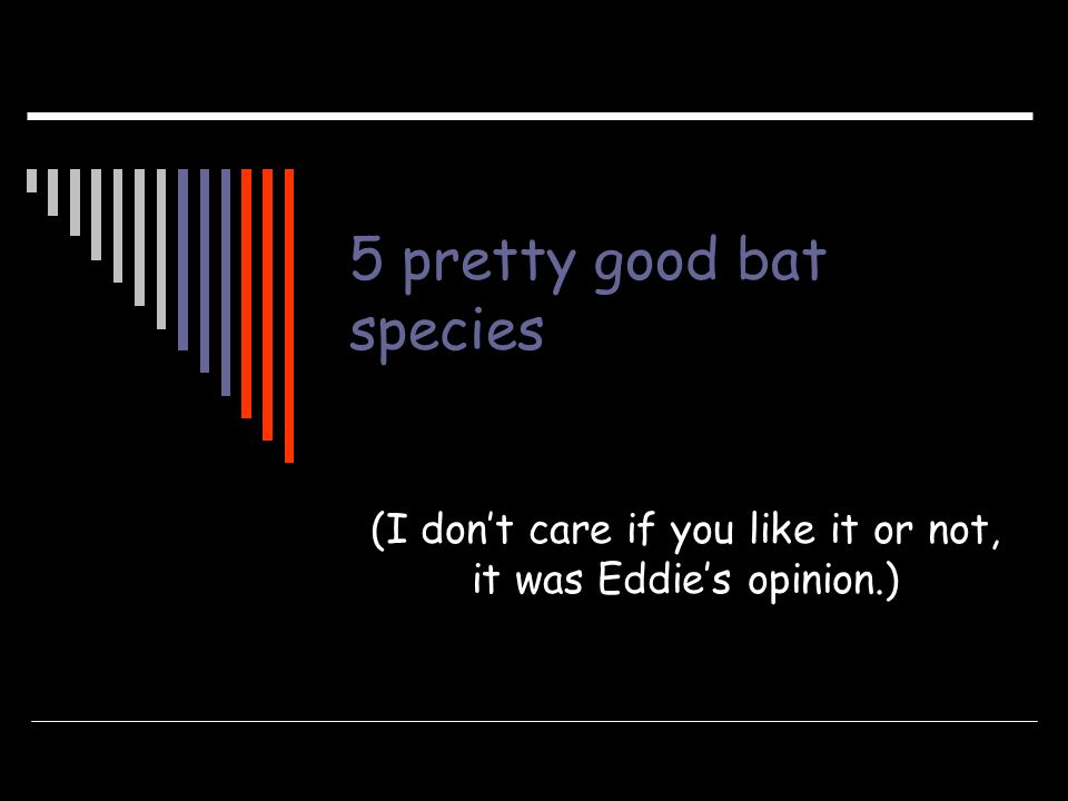 5 pretty good bat species (I dont care if you like it or not, it was Eddies opinion.)