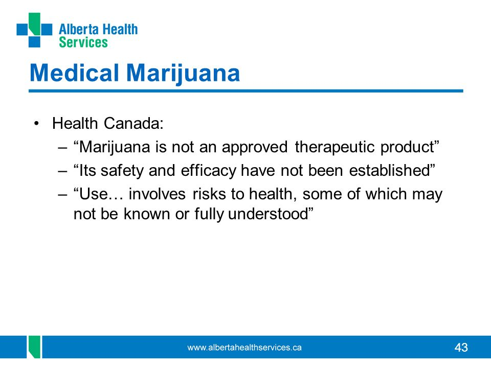43 Medical Marijuana Health Canada: –Marijuana is not an approved therapeutic product –Its safety and efficacy have not been established –Use… involves risks to health, some of which may not be known or fully understood