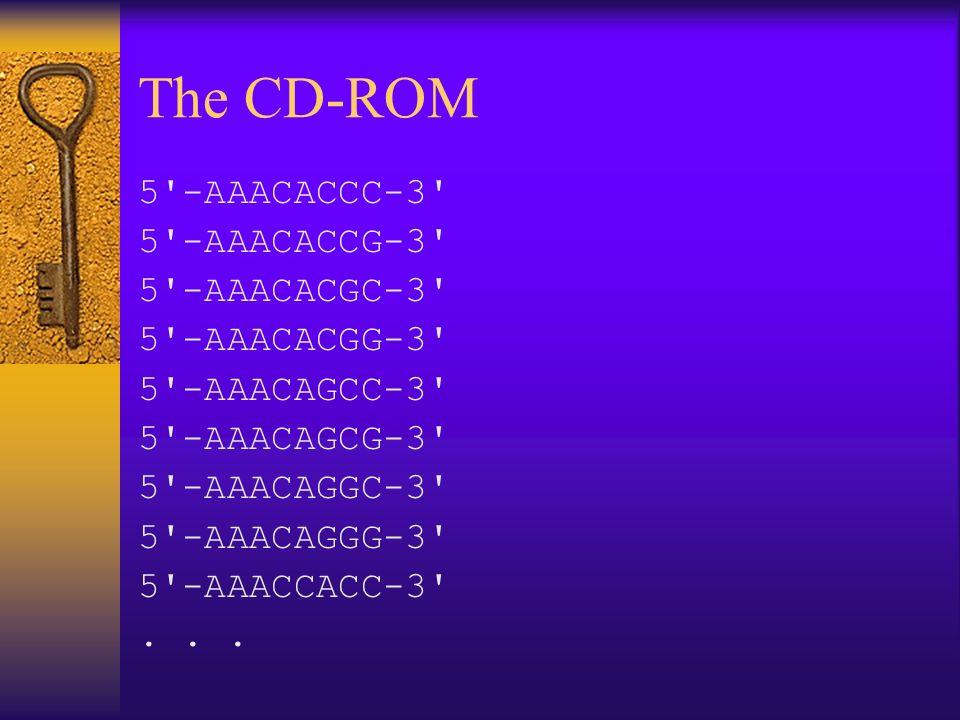 The CD-ROM 5 -AAACACCC-3 5 -AAACACCG-3 5 -AAACACGC-3 5 -AAACACGG-3 5 -AAACAGCC-3 5 -AAACAGCG-3 5 -AAACAGGC-3 5 -AAACAGGG-3 5 -AAACCACC-3 ...