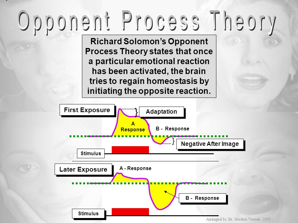 First Exposure Later Exposure Stimulus Negative After Image A Response A - Response B - Response } } Richard Solomons Opponent Process Theory states t