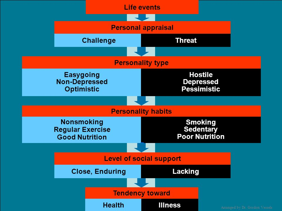Life events HealthIllness Personal appraisal ChallengeThreat Personality type Easygoing Non-Depressed Optimistic Hostile Depressed Pessimistic Persona