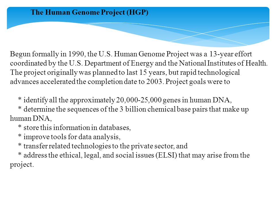 The Human Genome Project (HGP) Begun formally in 1990, the U.S. Human Genome Project was a 13-year effort coordinated by the U.S. Department of Energy