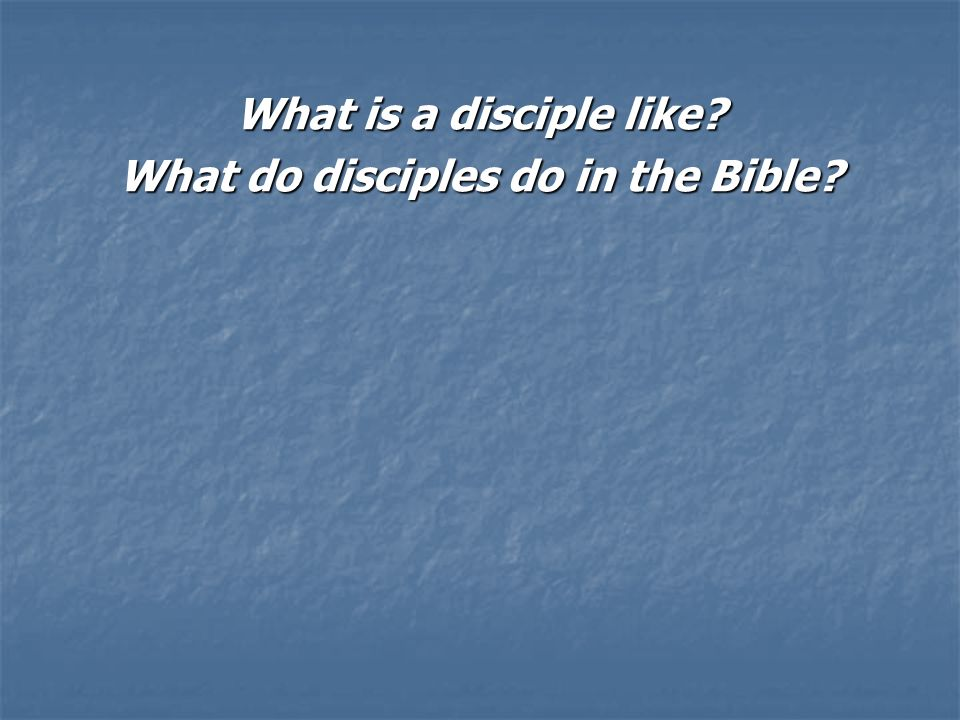 What is a disciple like What do disciples do in the Bible