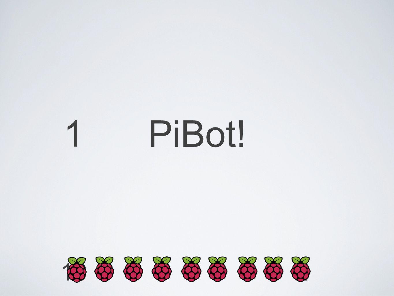 1 2345678910 PiBot!